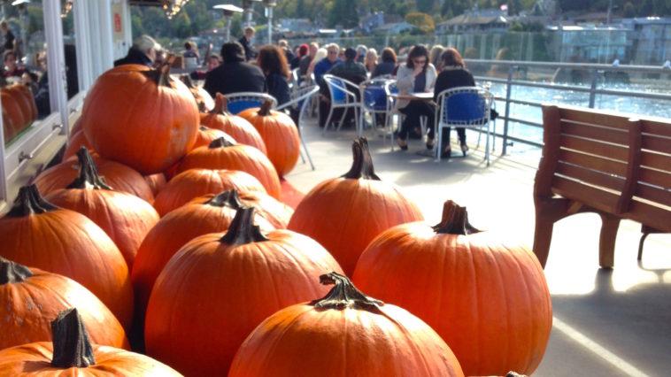 rays-pumpkin-carving-2